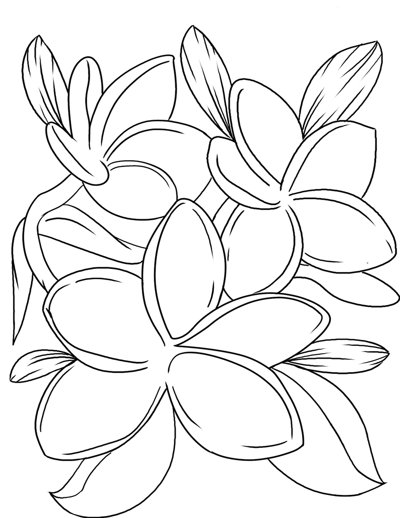Violet Coloring Pages - Best Coloring Pages For Kids in 2020 | Printable  flower coloring pages, Flower coloring pages, Coloring pages