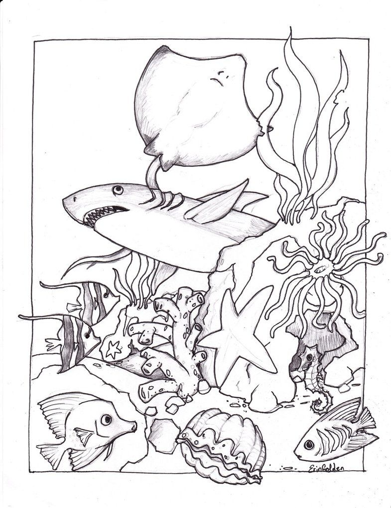 ocean scenes coloring pages - photo#19