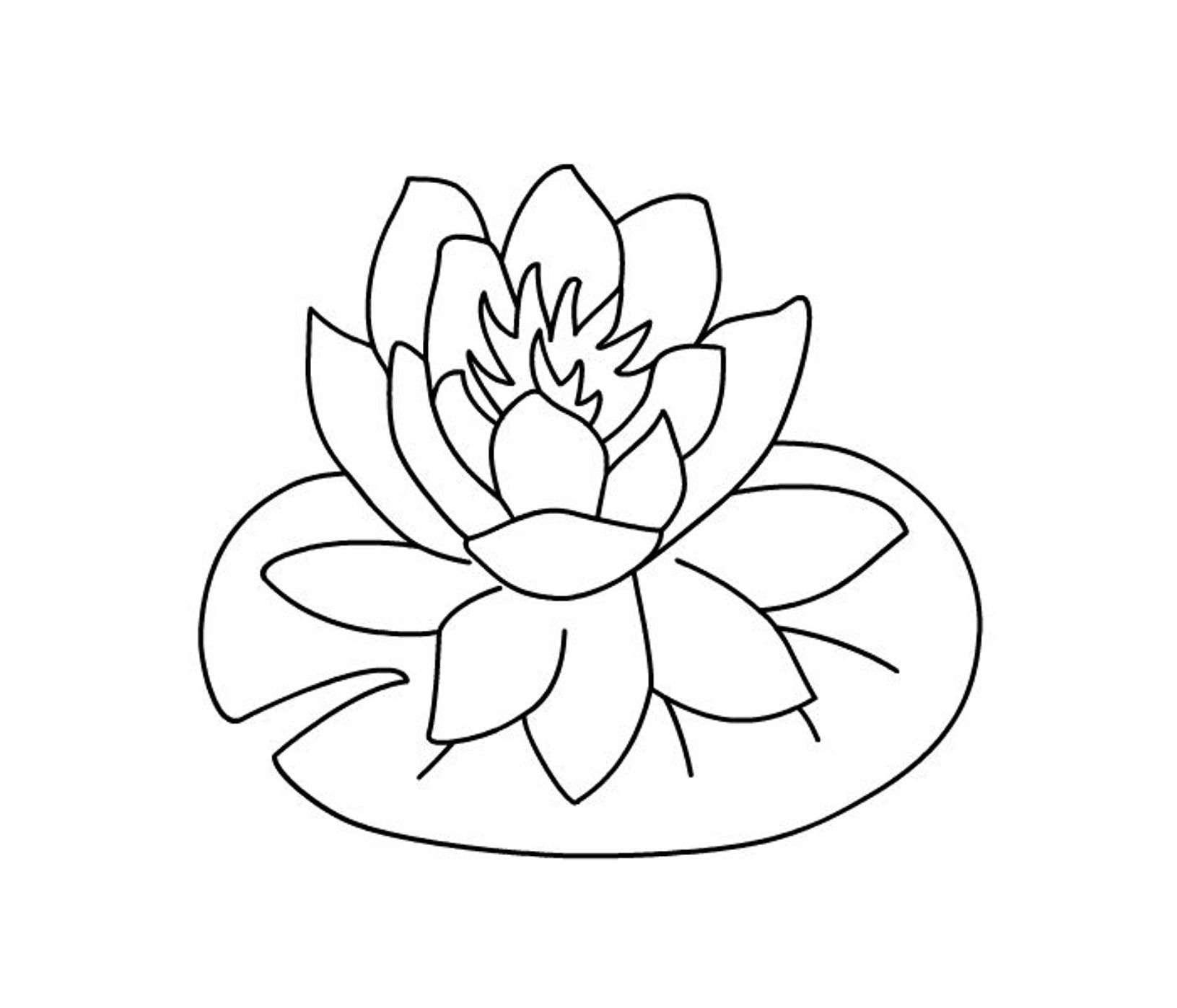 Hibiscus Flowers Coloring Pages | Flower Coloring pages of ...