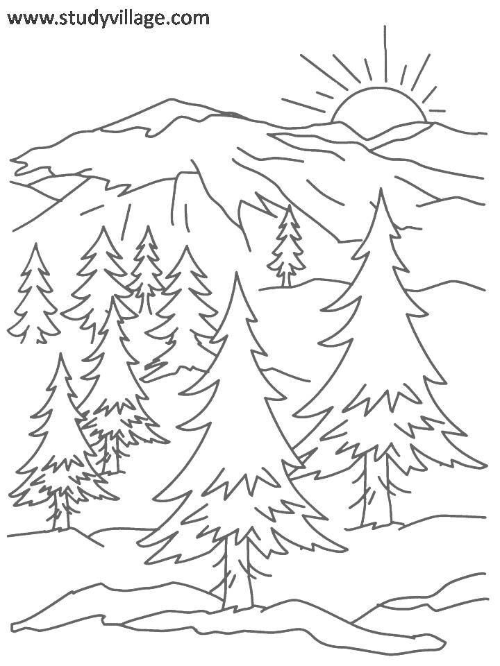 Summer Holidays coloring page for kids 16: Summer Holidays