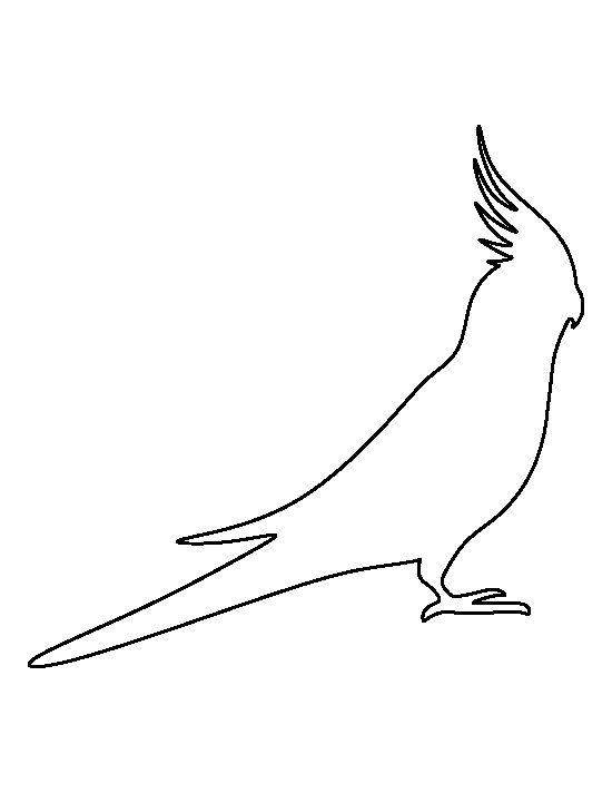 Bird stencil printable coloring home - Dessin calopsitte ...
