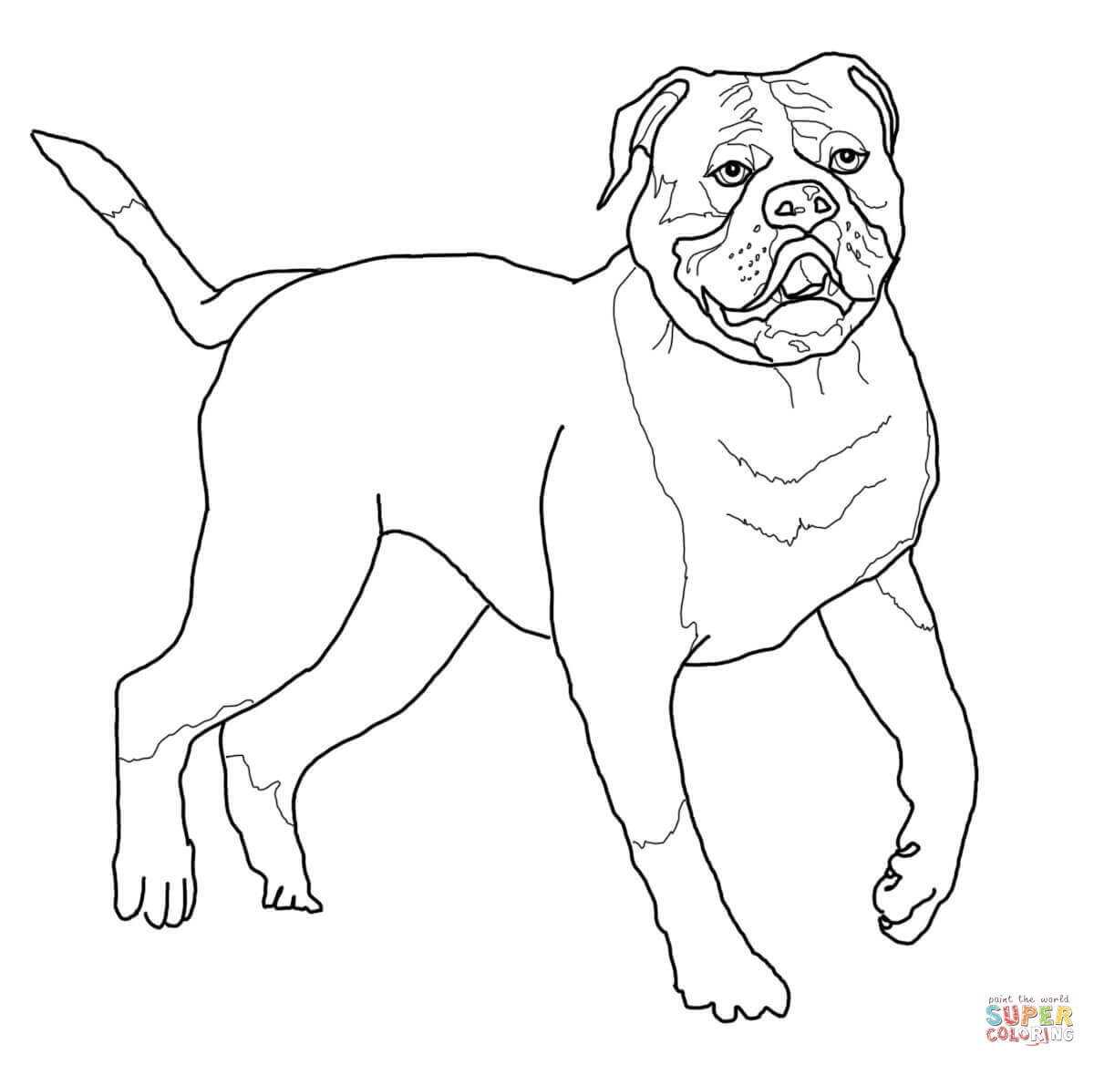 french bulldog coloring pages coloring home