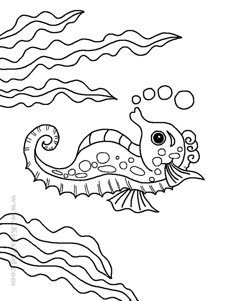 animal coloring pages of ocean animals coloring home