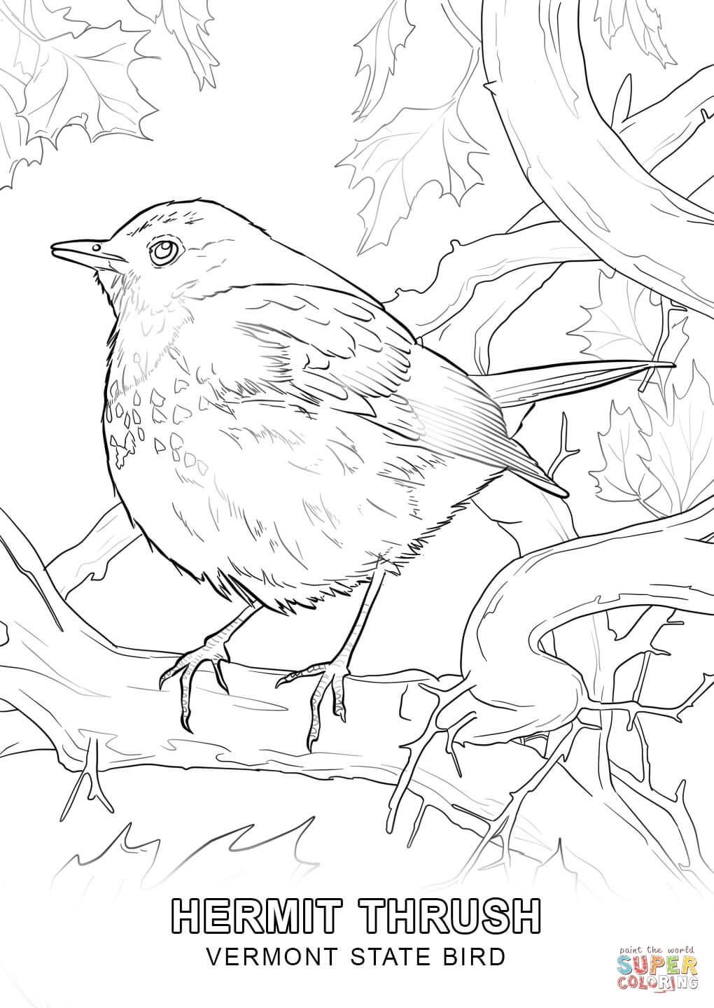 10 Pics Of Wisconsin State Bird Coloring Page Wisconsin State