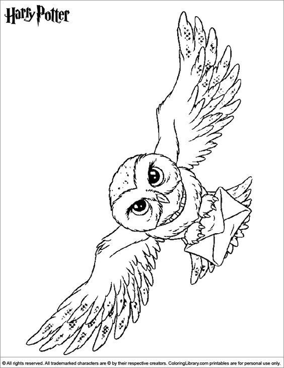 Hedwig Coloring Pages Coloring Home