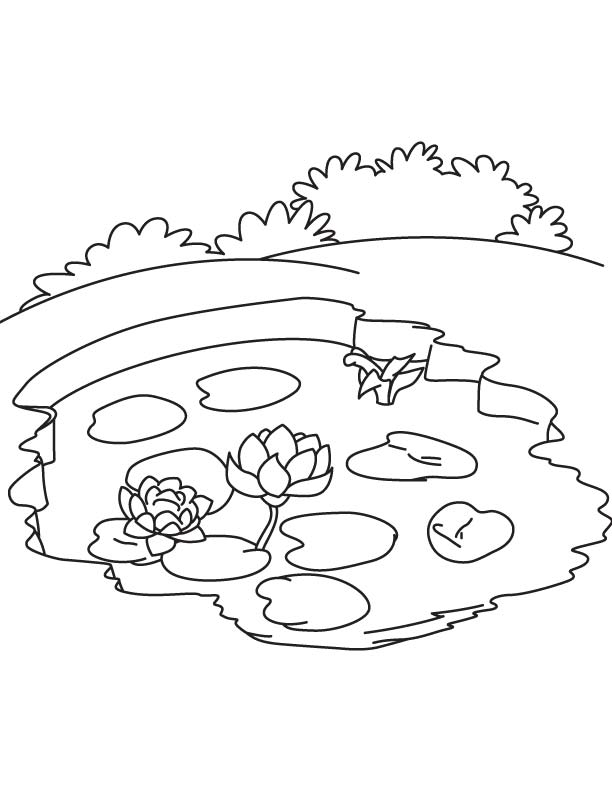 Free Coloring Pages Pond Animals : Free coloring pages of a frog in pond home