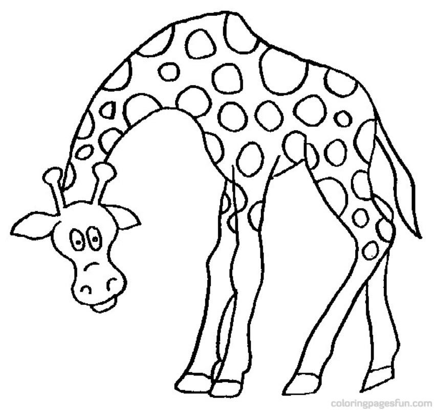 giraffe painting colouring pages