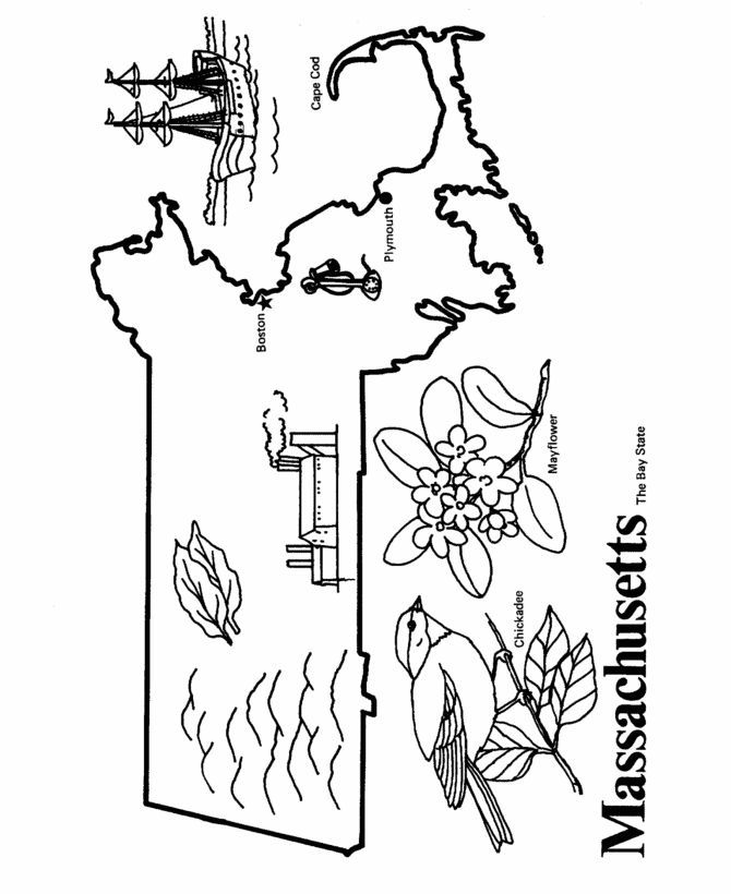 Massachusetts State Quarter Coloring Page Usa Coloring