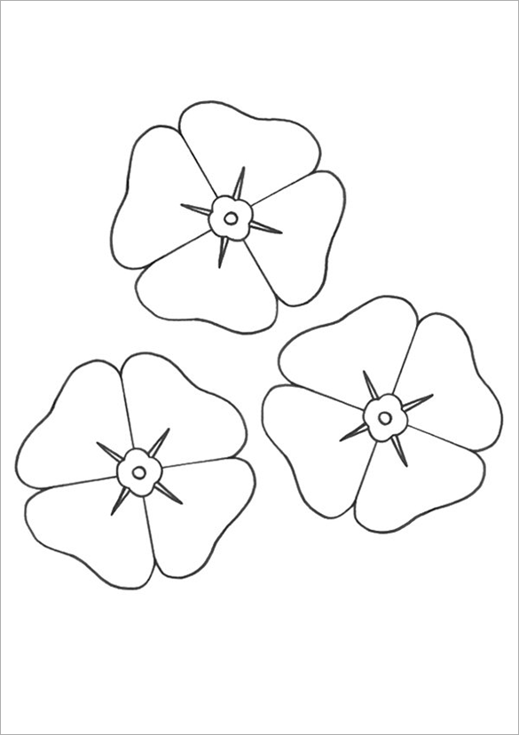 Coloring Pages Poppy Flower Coloring