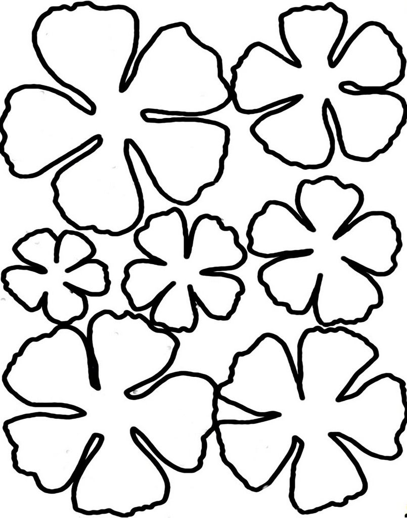 Printable Flower Templates Coloring Home