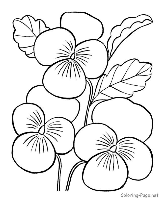 1000 Ideas About Flower Coloring Pages