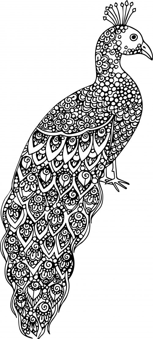 advanced animal coloring pages advanced coloring pages of animals coloring home