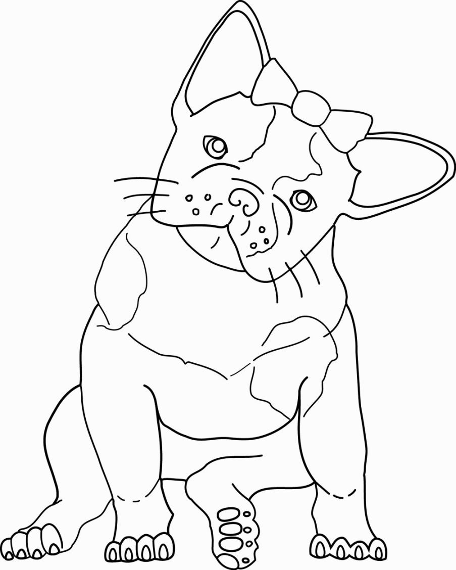 bull dog coloring pages coloring home