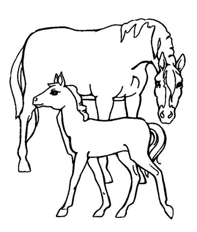 Mustang Horse Coloring Pages
