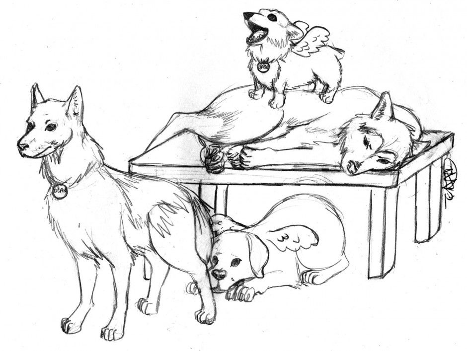 Dog Printable Coloring Pages Husky