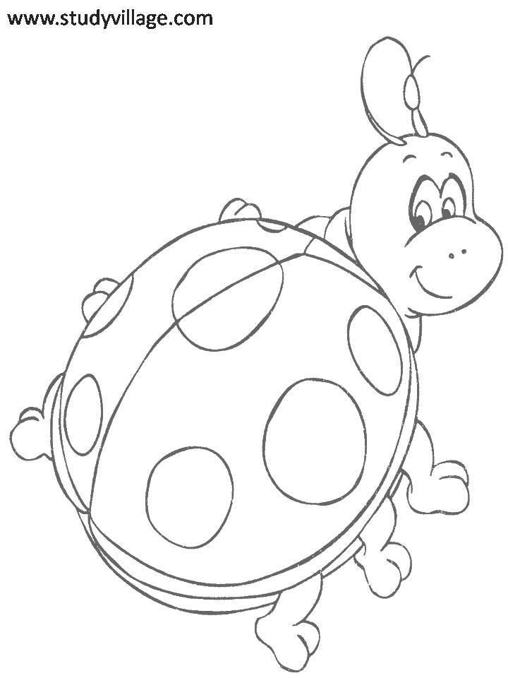 funny fly insects coloring pages - photo#39