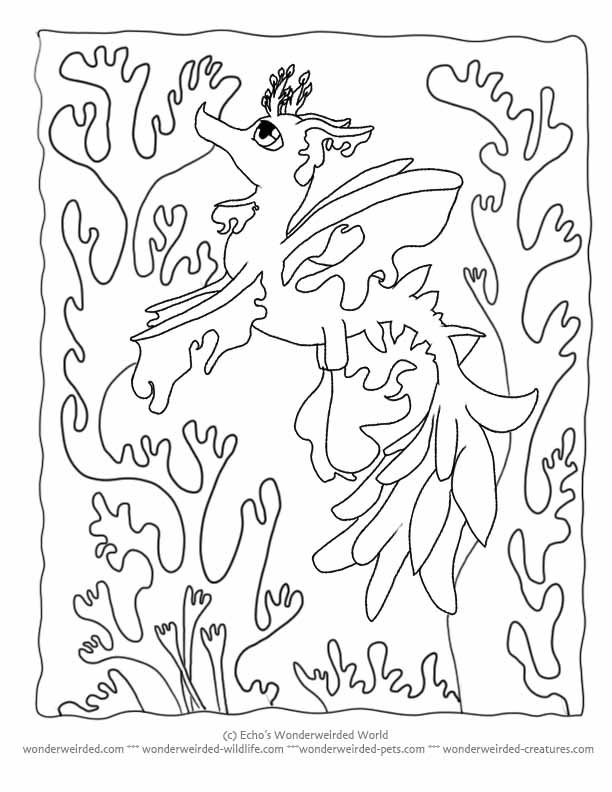 Seaweed Coloring Pages - Coloring Home