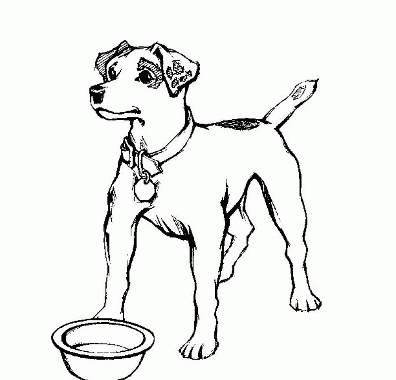 dog coloring pages realistic fish - photo#26
