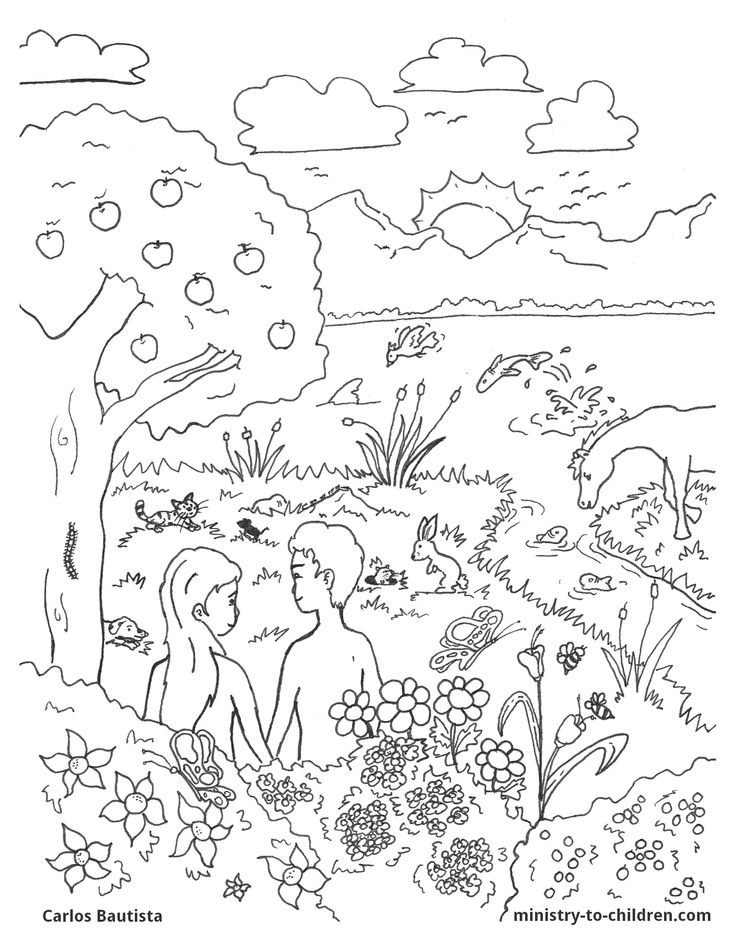 Days of creation coloring pages coloring home for Coloring pages of creation