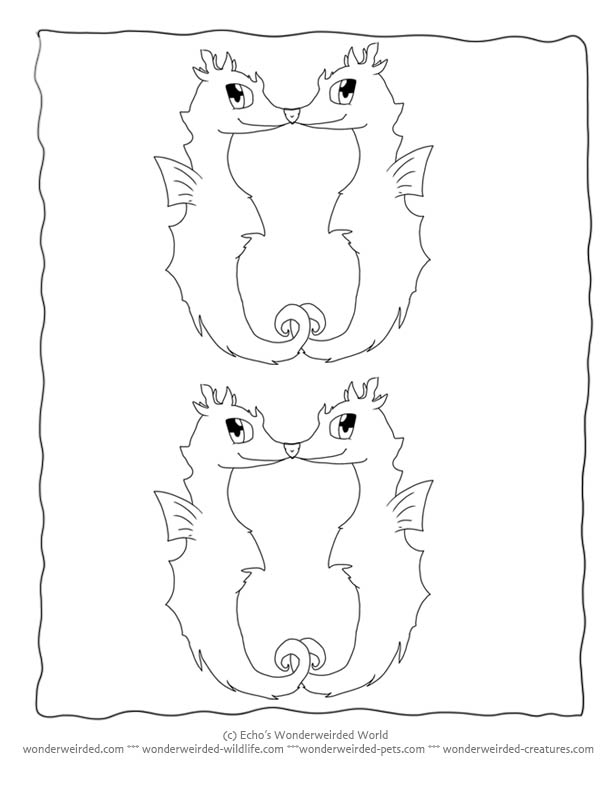 cartoon animals coloring pages seahorse fantasy coloring pages of memes