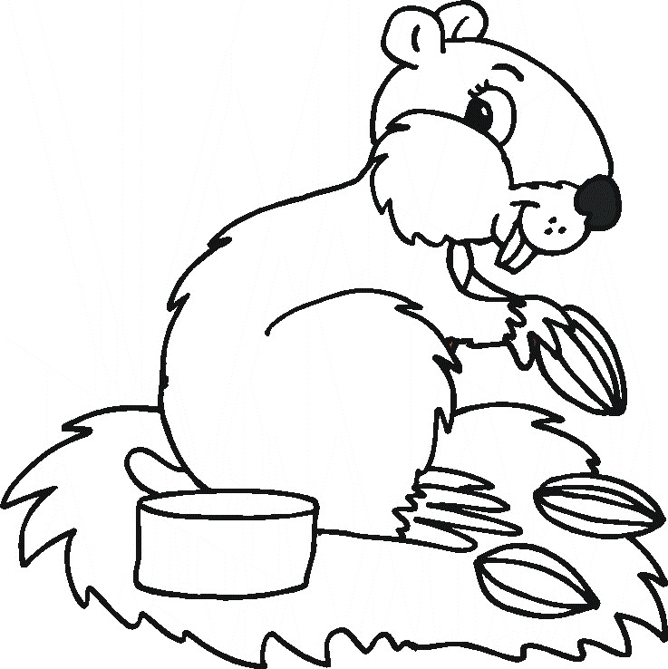 hibernation coloring pages - photo#19