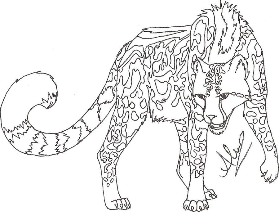 baby cheetah coloring pages - photo#10