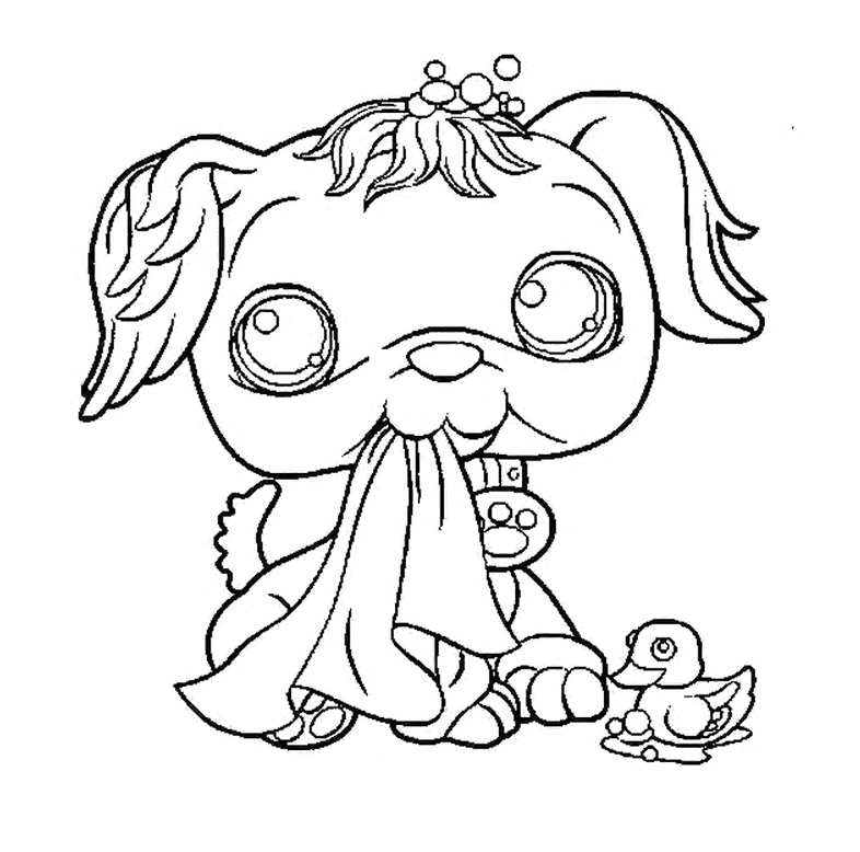 Pet Shop Coloring Pages : Cute Pet Shop Coloring Pages Kids