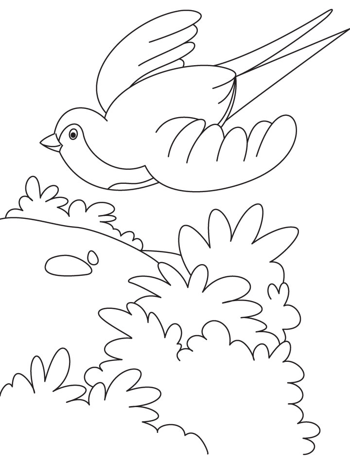Bird Flying Cartoon - AZ Coloring Pages
