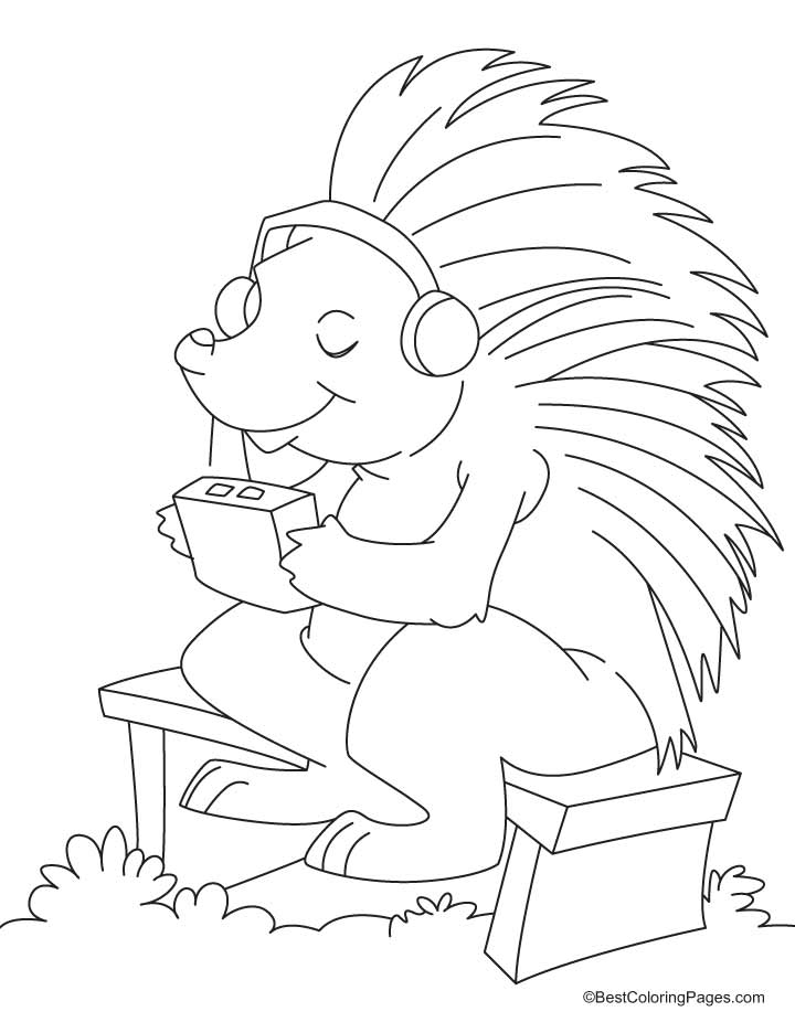 Porcupine Coloring Pages Porcupine Coloring Pages