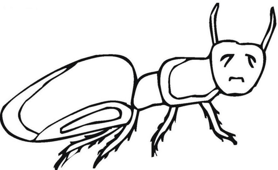 Ants coloring page coloring home for Ant coloring pages for kids