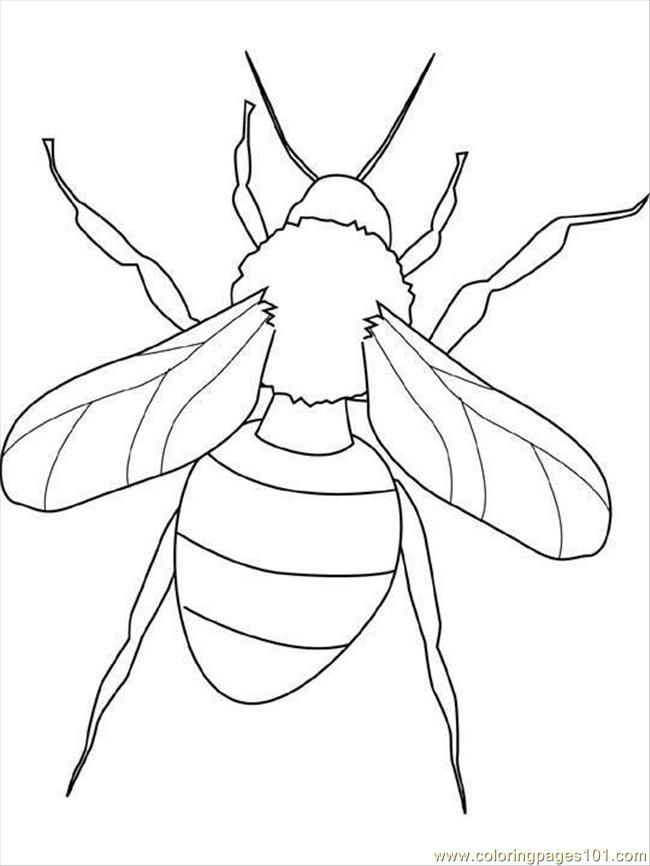 Free I For Insects Coloring Pages Insects Colouring Pages