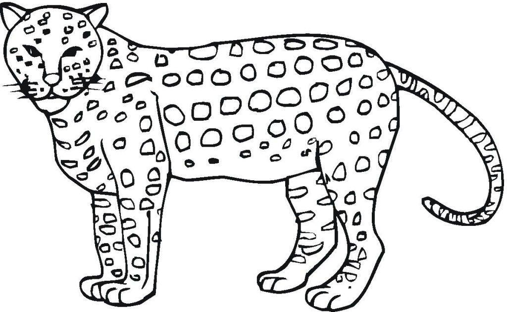 Chester Cheetah Cool | Star Sasa | 630x1024