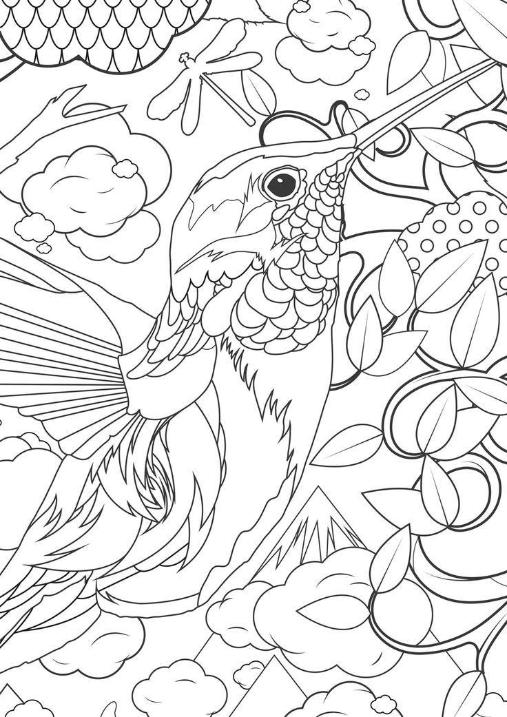 Blue Crowned Green Parrot | Super Coloring (med billeder) | Adult ... | 1041x736