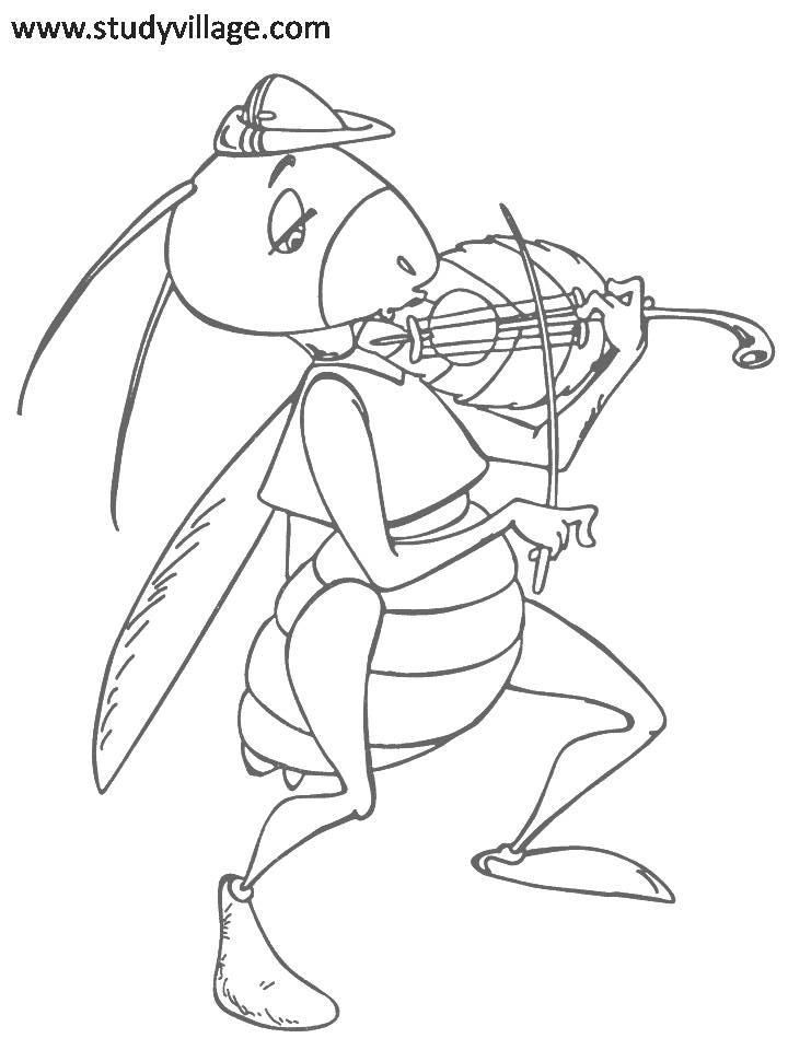 funny fly insects coloring pages - photo#12