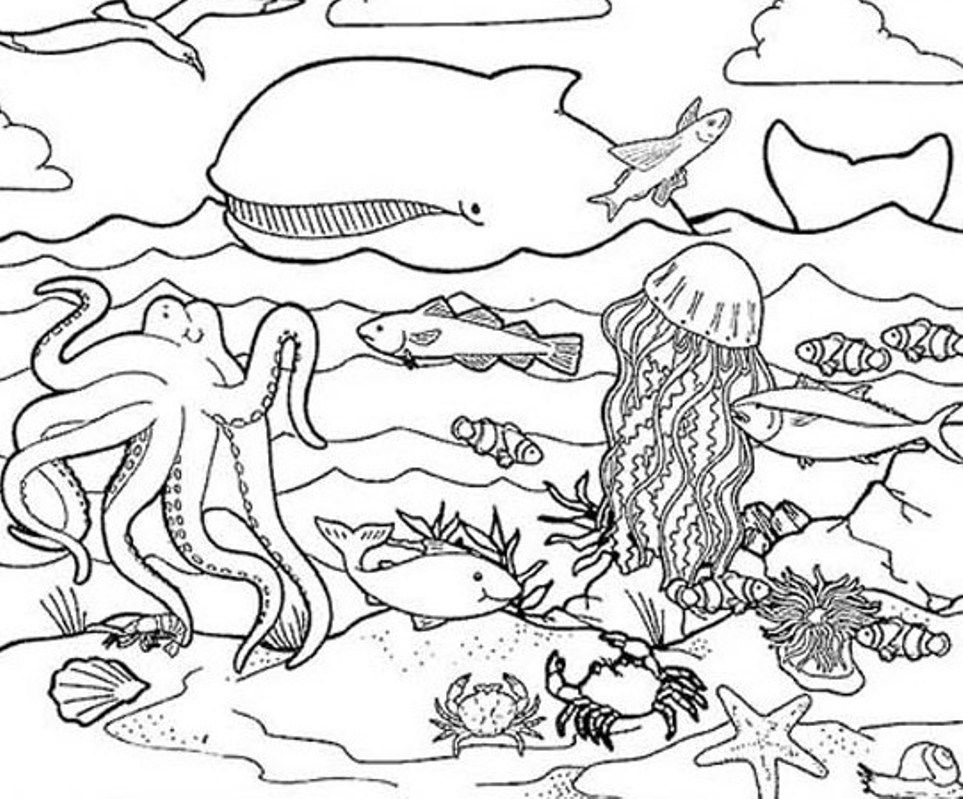 Sea life coloring page coloring home for Sea creature coloring page