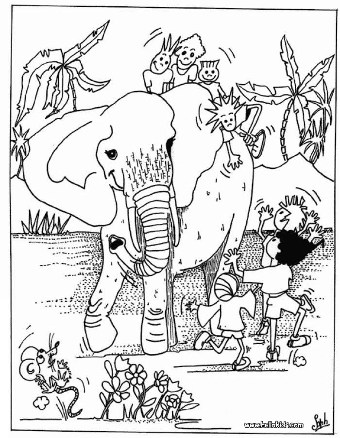 Wild Animals Coloring Page Images & Pictures - Becuo