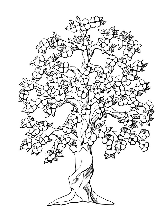Coloring Pages Of Trees With Leaves
