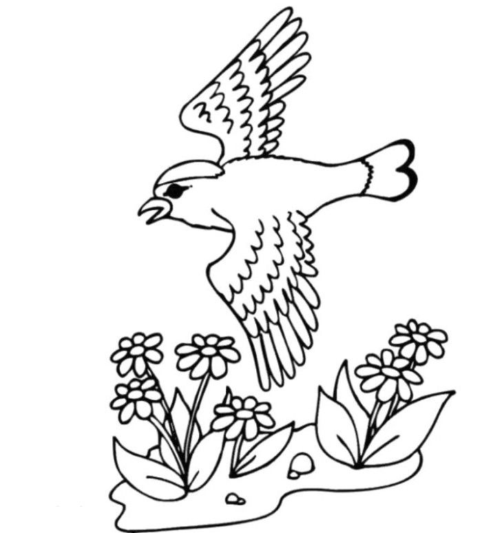 Welcome Spring Coloring Pages Birds