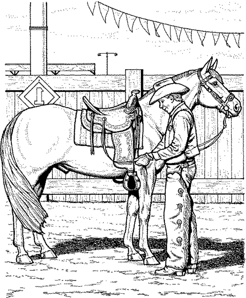 horse coloring pages for kids printable kids colouring pages