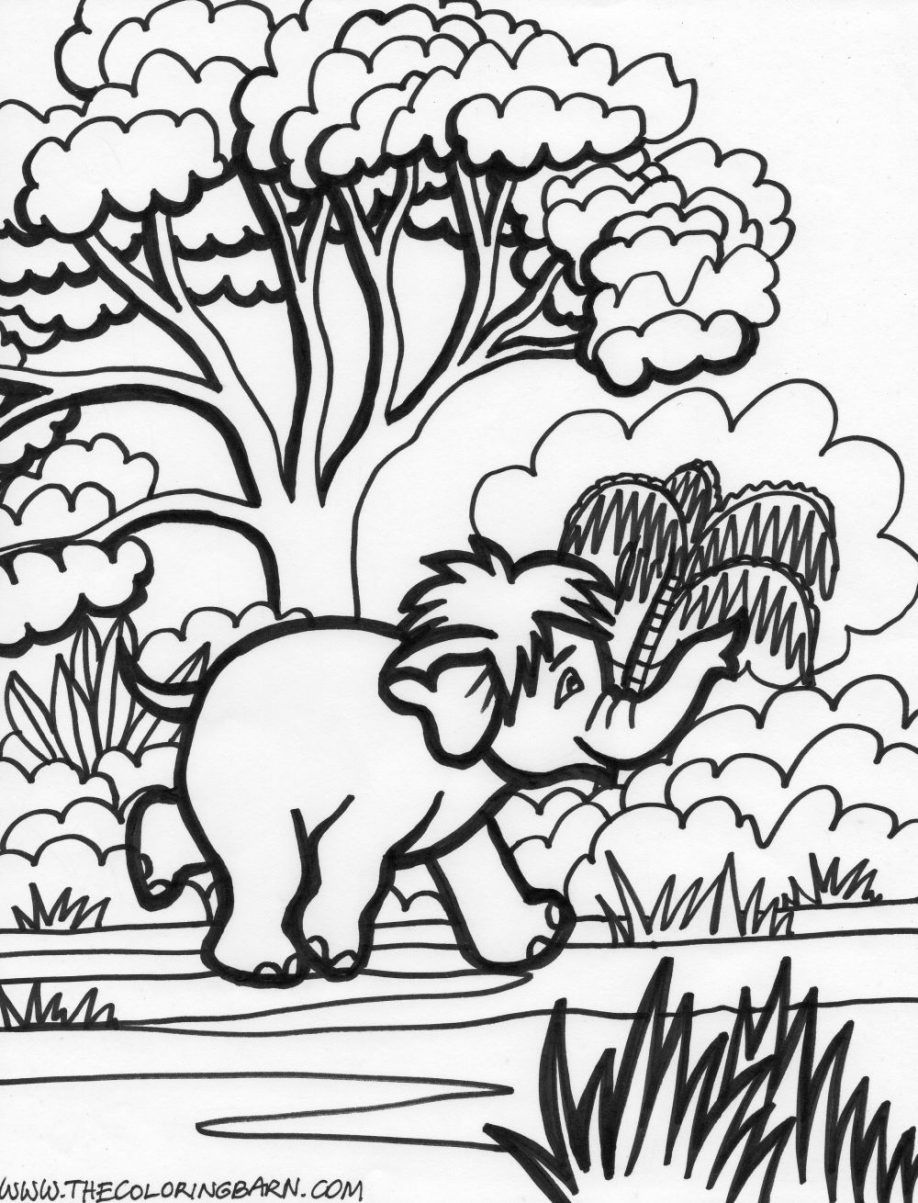 jung e coloring pages coloring home