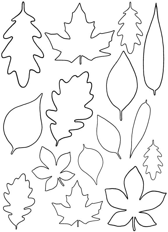 Free Leaf Templates Coloring Home