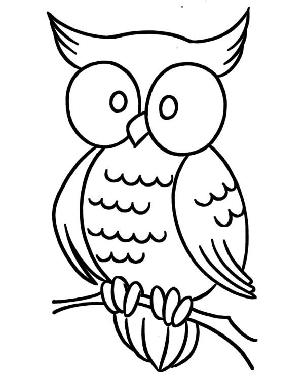 - Large Coloring Pages - Coloring Home