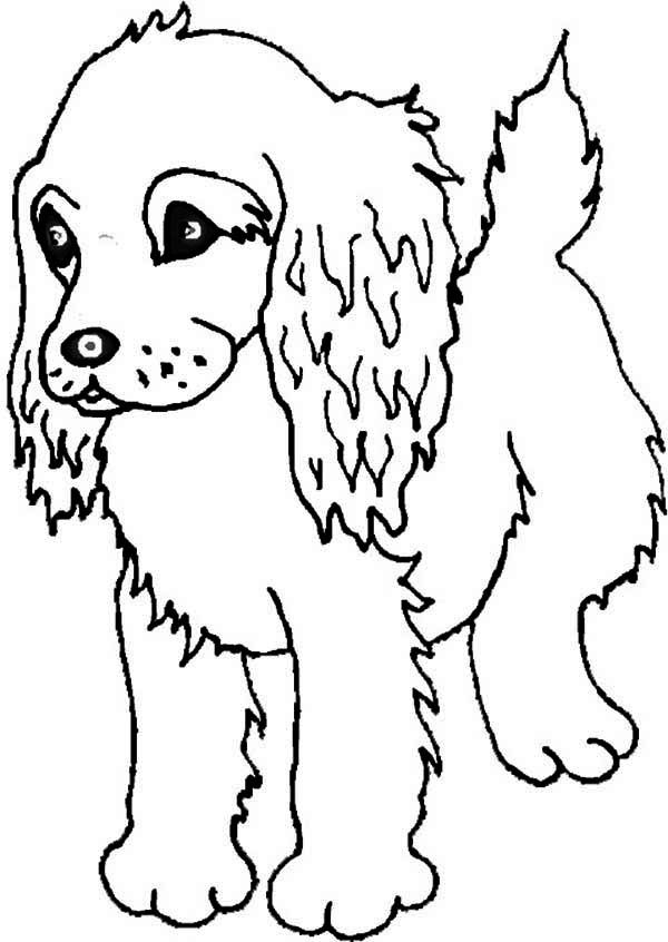 print out coloring pages of puppies coloring