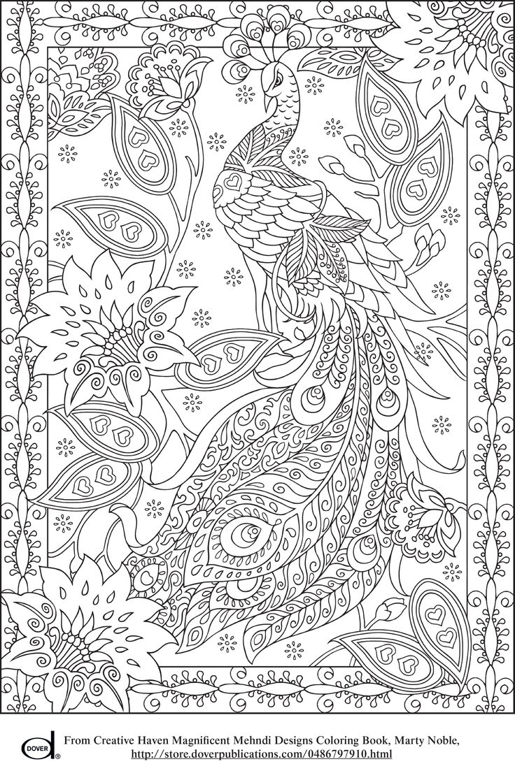 colour pages online : Adult Coloring Pages Online Online Coloring Pages For Adults To Print Peacock Adult Coloring Page