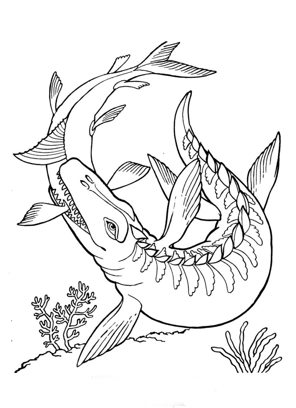 swimming dinosaur coloring pages free printable dinosaur coloring