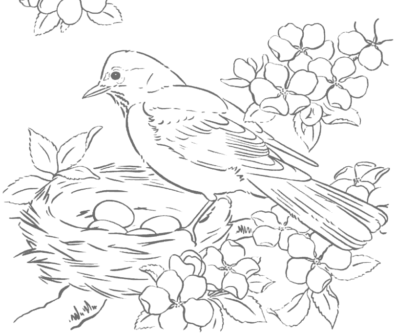 Robin And Eggs In Birds Nest Tracing Coloring Page – coloring.rocks!