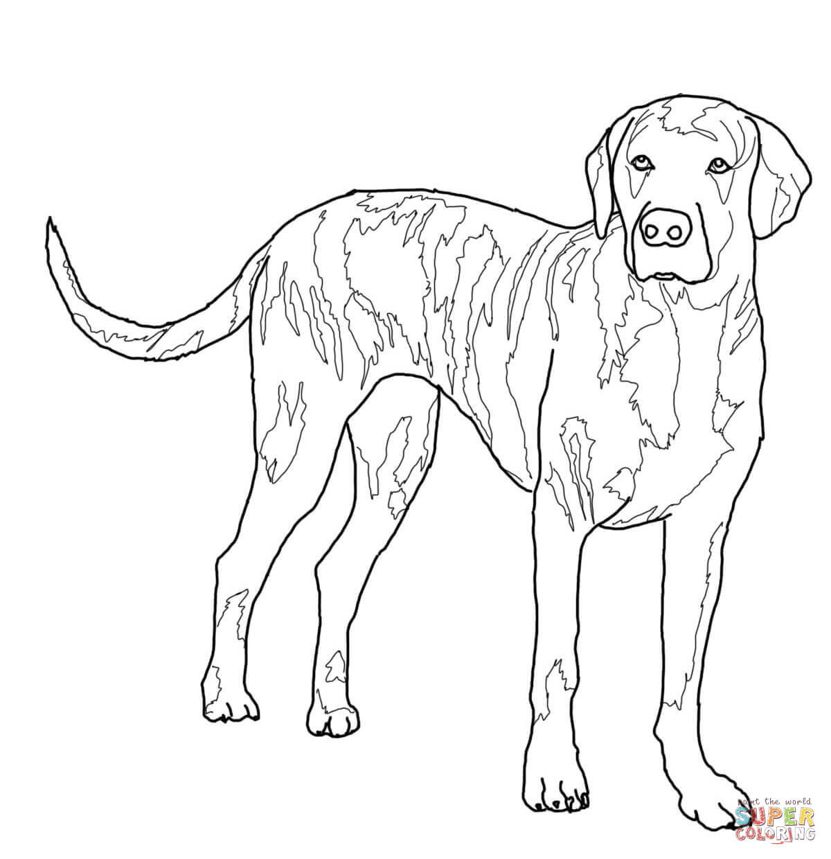 fox and hound coloring pages - photo#27