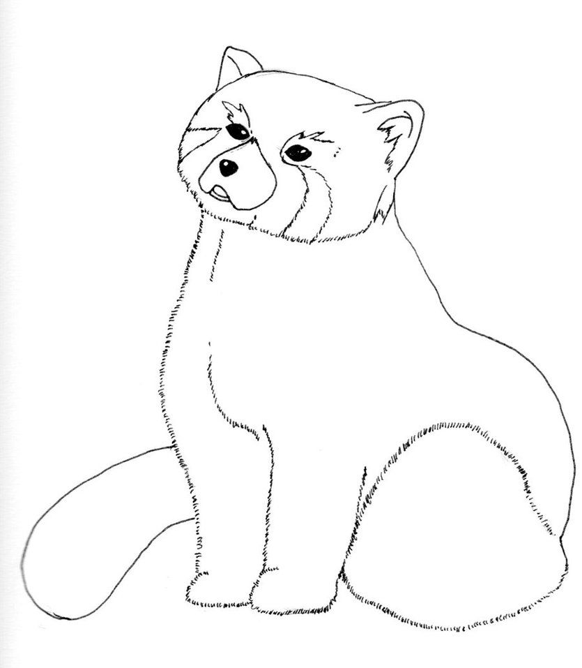 11 Pics of Cute Red Panda Coloring Pages - Red Panda Coloring ...