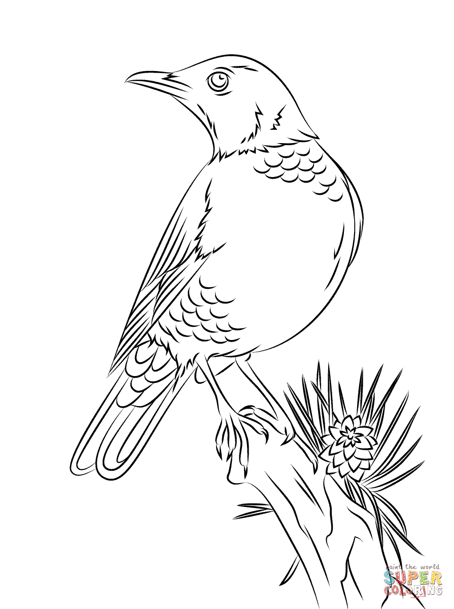 Woodland Animals Coloring Pages | Free Printable Pictures - Coloring ...