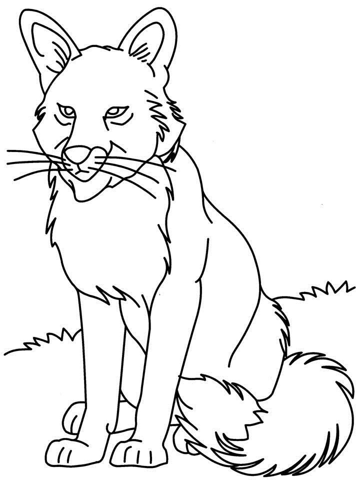 Gray wolf coloring pages az coloring pages for Grey wolf coloring pages